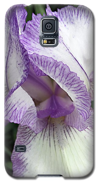 Simply Beautiful Galaxy S5 Case by Sherry Hallemeier