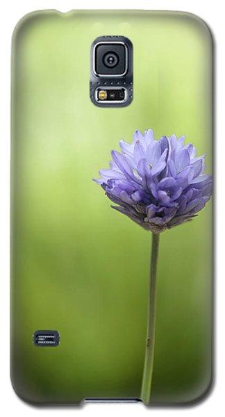 Simply Blue Galaxy S5 Case