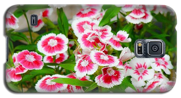 Galaxy S5 Case featuring the photograph Simply Flowers by Rand Herron