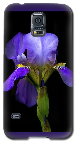 Simply Stunning Galaxy S5 Case by Penny Meyers