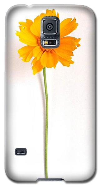 Simply Sunny Galaxy S5 Case