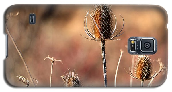 Simply Thistle Galaxy S5 Case