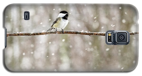 Sing Chickadee Sing Galaxy S5 Case by Angie Rea