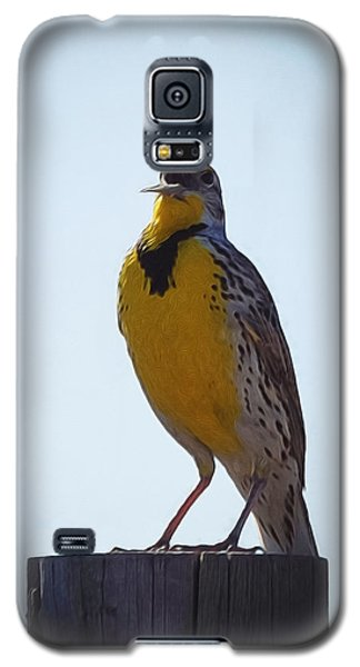 Sing Me A Song Galaxy S5 Case by Ernie Echols