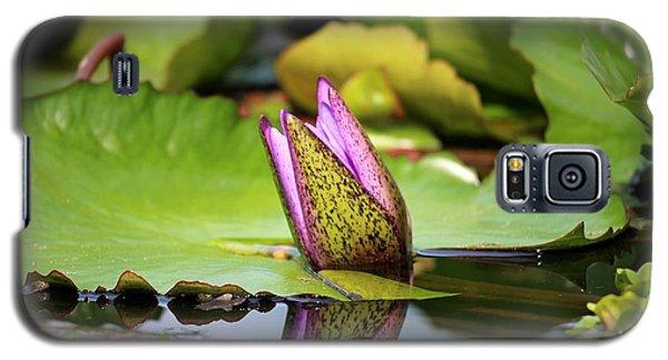 Singapore Bloom Galaxy S5 Case