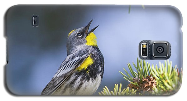 Singing Audubon's Warbler Galaxy S5 Case