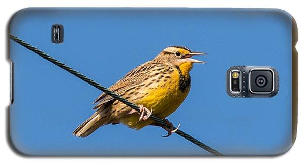 Meadowlark Galaxy S5 Case - Singing On The Wire by Jurgen Lorenzen