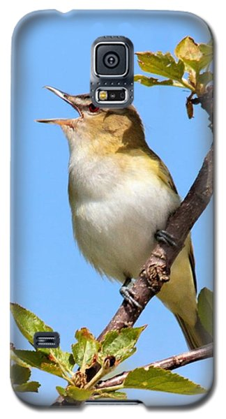 Singing Red-eyed Vireo Galaxy S5 Case
