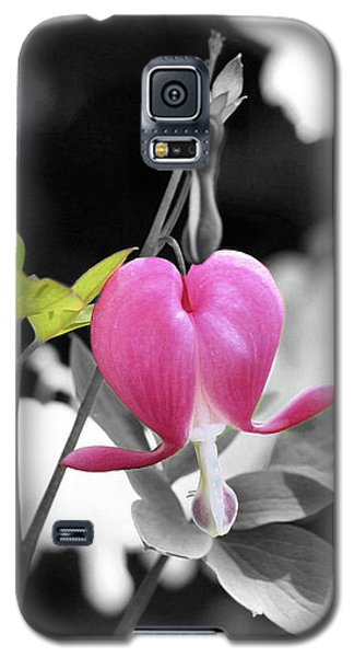 Single Bleeding Heart Partial Galaxy S5 Case