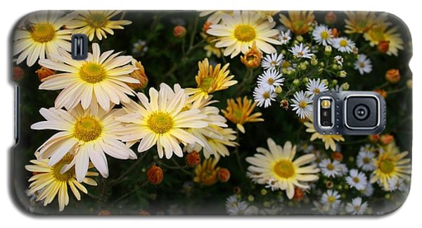 Galaxy S5 Case featuring the photograph Single Chrysanthemums by Kathryn Meyer