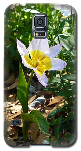 Galaxy S5 Case featuring the photograph Single Flower - Simplify Series by Carla Parris