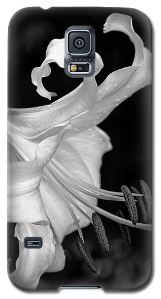 Single Lily In Black And White. Galaxy S5 Case