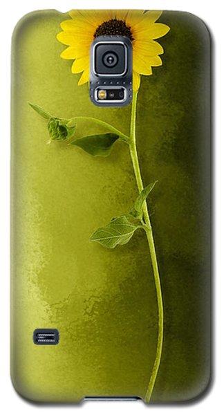 Single Long Stem Sunflower Galaxy S5 Case