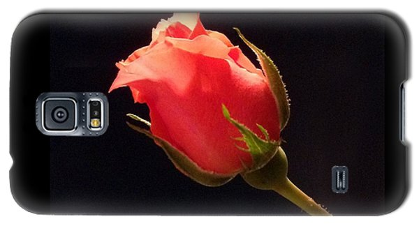 Single Pink Rose Bud Galaxy S5 Case
