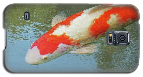 Galaxy S5 Case featuring the photograph Single Red And White Koi by Gill Billington