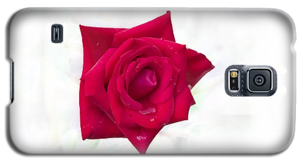 Single Red Rose Galaxy S5 Case
