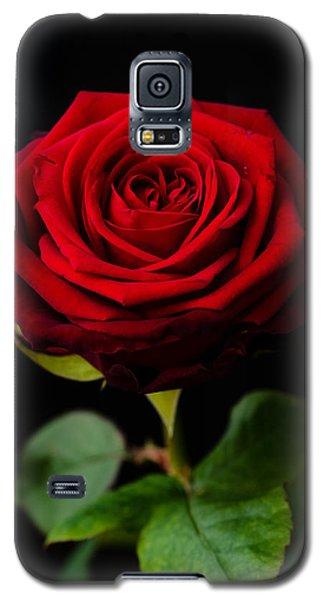 Single Rose Galaxy S5 Case