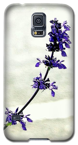 Galaxy S5 Case featuring the photograph Single Stem Bluebonnet by Ellen O'Reilly
