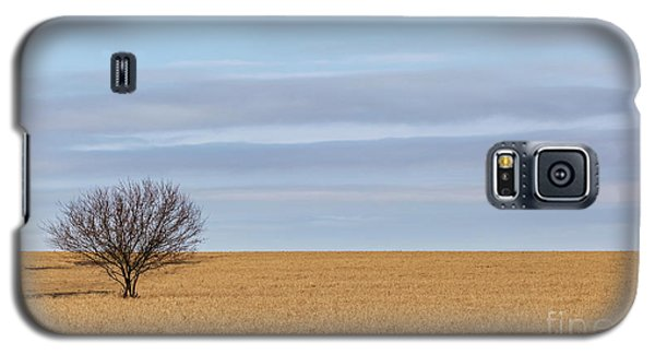 Single Tree In Large Field With Cloudy Skies Galaxy S5 Case