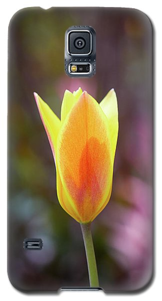 Single Tulip Galaxy S5 Case