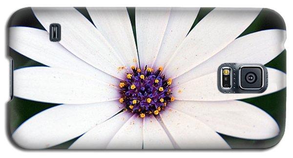 Single White Daisy Macro Galaxy S5 Case