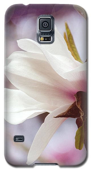 Galaxy S5 Case featuring the photograph Single White Magnolia by Jordan Blackstone