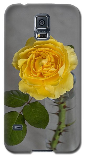 Single Yellow Rose With Thorns Galaxy S5 Case