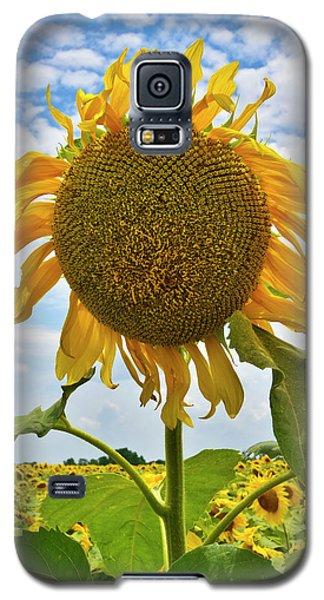 Sister Golden Hair Galaxy S5 Case