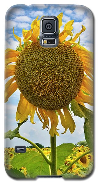 Sister Golden Hair Galaxy S5 Case