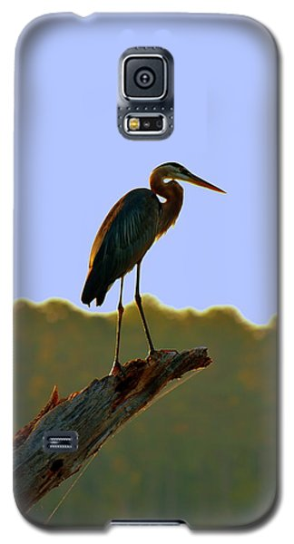 Sitting High On The Log Galaxy S5 Case