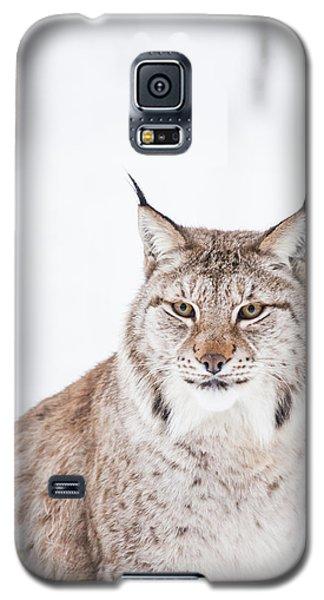 Sitting Pretty Galaxy S5 Case