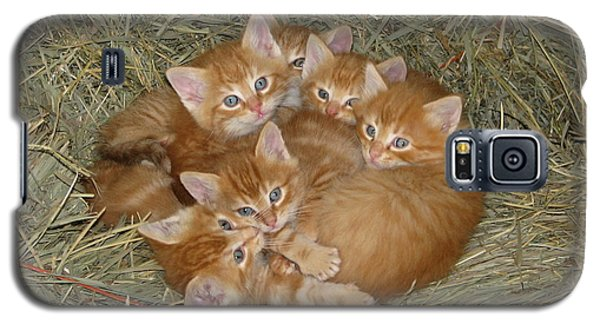 Six Kittens Galaxy S5 Case