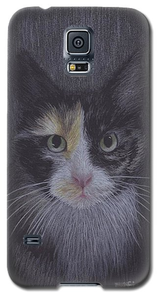 Six Galaxy S5 Case