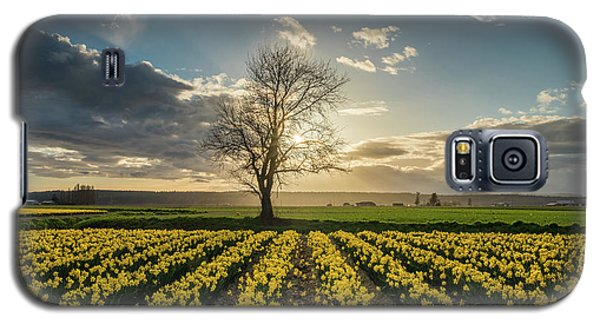 Galaxy S5 Case featuring the photograph Skagit Daffodils Lone Tree  by Mike Reid
