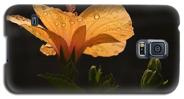 Skc 9937 The Grace Of Hibiscus Galaxy S5 Case by Sunil Kapadia