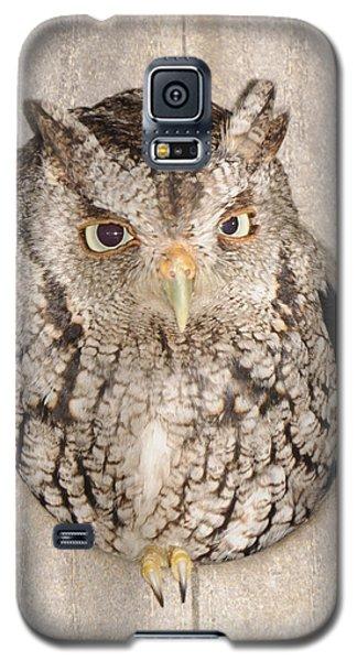 Skreech Owl Galaxy S5 Case