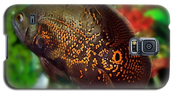 Galaxy S5 Case featuring the photograph Skeeter by Betty Northcutt