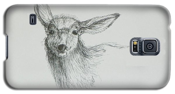 Sketch Of A Mule Deer Doe Galaxy S5 Case