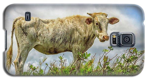 Skinny Cow Galaxy S5 Case
