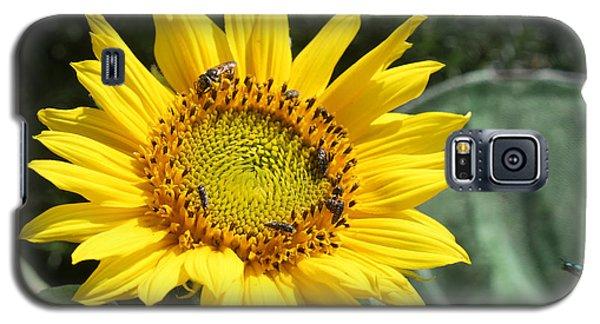 Skipping Spring Galaxy S5 Case