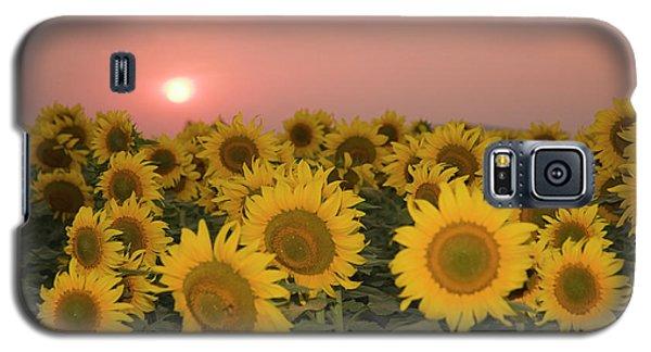 Skn 2179 Sunflower Landscape Galaxy S5 Case