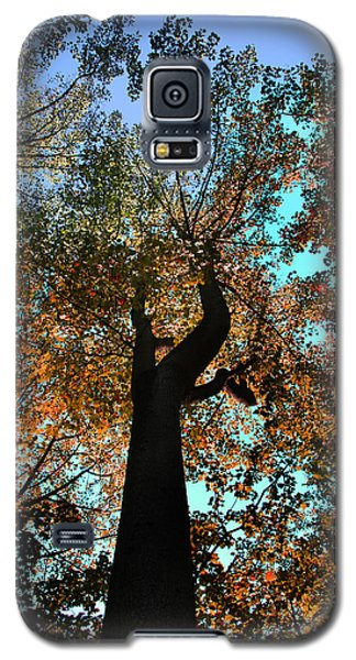 Galaxy S5 Case featuring the photograph Sky Flower by Joseph G Holland