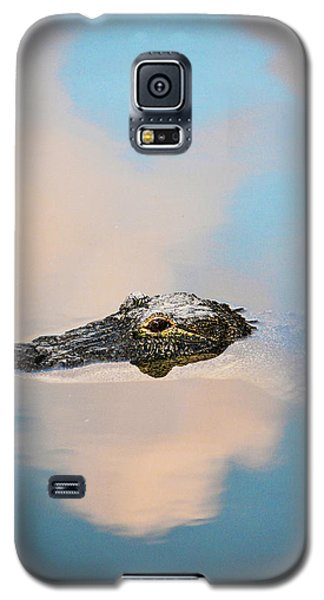 Sky Gator Galaxy S5 Case by Josy Cue