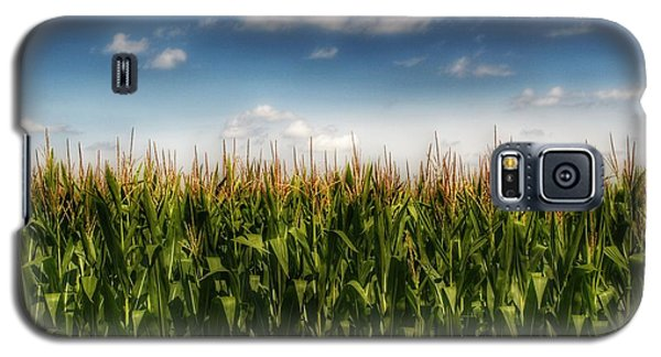 2005 - Sky High Corn Galaxy S5 Case