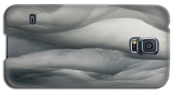 Sky Life Undulatus Asperatus Galaxy S5 Case