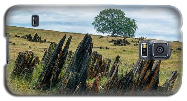 Slate Filled Meadow Galaxy S5 Case
