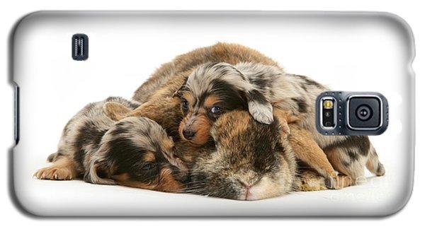 Sleep In Camouflage Galaxy S5 Case