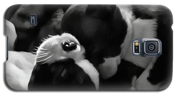 Sleeping Beauties - Boston Terriers Galaxy S5 Case