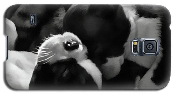 Sleeping Beauties - Boston Terriers Galaxy S5 Case