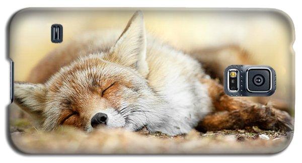 Sleeping Beauty -red Fox In Rest Galaxy S5 Case by Roeselien Raimond
